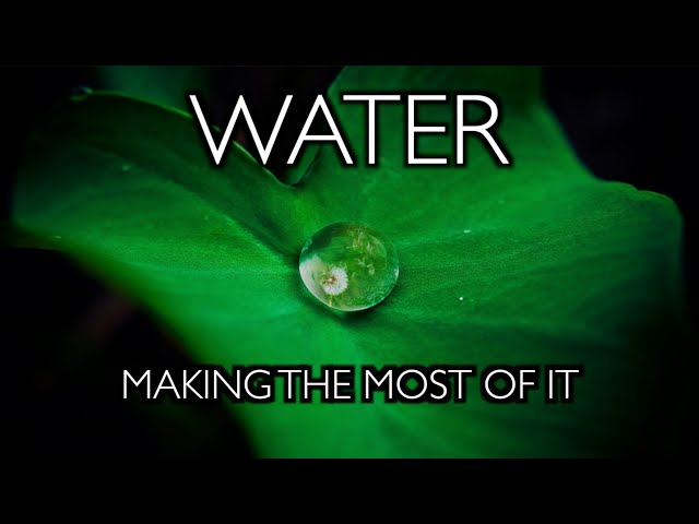 Water: Making the Most of It - Growing in the Mega Drought