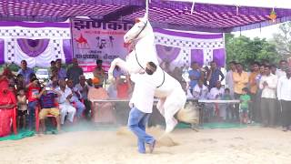 New Marwadi Dance 2018   New marwadi Horse and Camel Dance 2018   New Dj Song