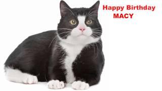 Macy  Cats Gatos - Happy Birthday