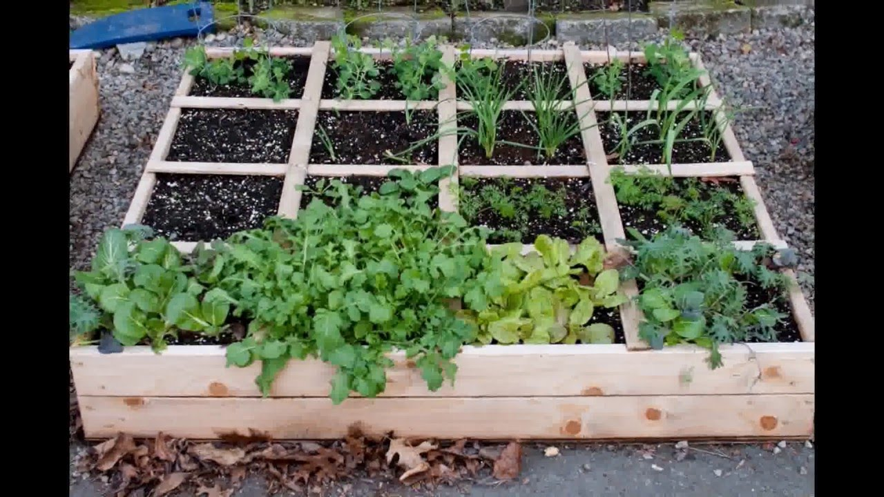 Raised bed garden design raised garden bed design for Raised vegetable garden bed designs