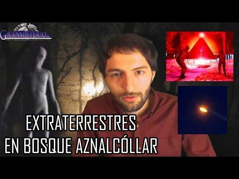 Cazadores encuentran un extraño ser extraterrestre en el bosque de Aznalcóllar