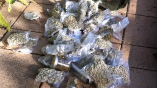 Dude Finds 175K Of Weed Stashed in Yard  Newsbreaker  OraTV