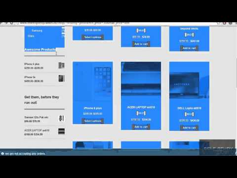 Wordpress tutorial 01 Which type of Website we will create