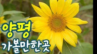 양평 가볼만한곳2   아름다운정원카페 내추럴가든 529…