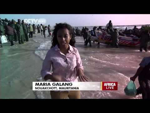Mauritania's Abundant Waters are a Haven for Fishermen
