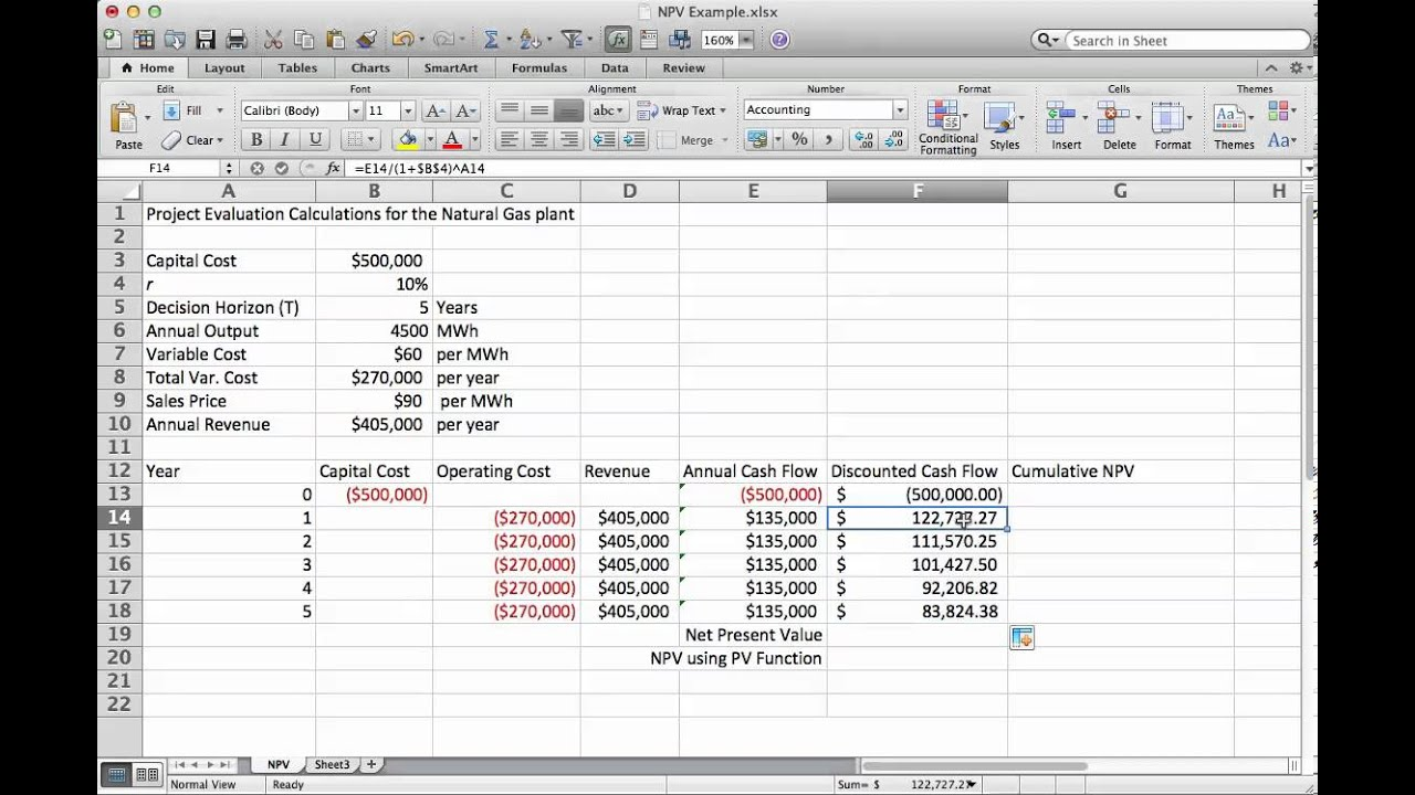 Project Decision Metrics: Net Present Value   EME 801