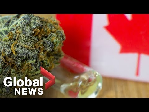 What tourists need to know about pot legalization in Canada