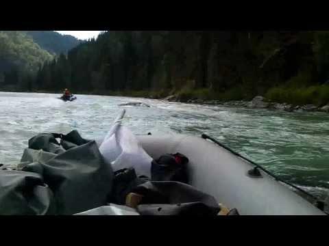 рыбалка в верховьях катуни