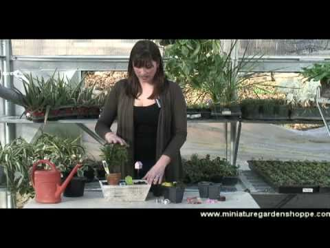 How to make a miniature garden Easter centerpiece YouTube