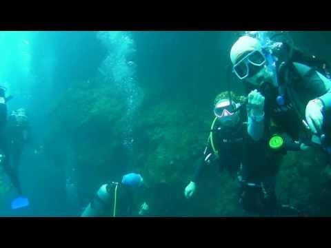 2014-02-09 GrandBlue Bohol Tour. OpenWater Divers' Fun Dive