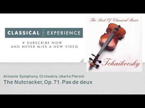 P. Tchaikovsky : The Nutcracker, Op. 71. Pas de deux - ClassicalExperience