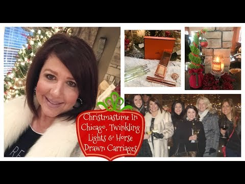 Karen's Vlog: Christmastime In Chicago, Twinkling Lights, Horse Drawn Carriages