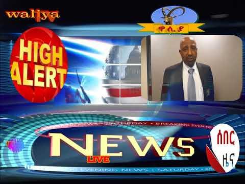 voe waliya media communication wmc-tv VIP CITIZEN TODAY NEWS
