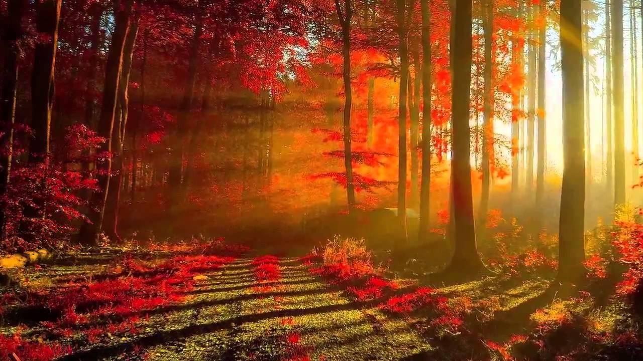 картинки музыка осень