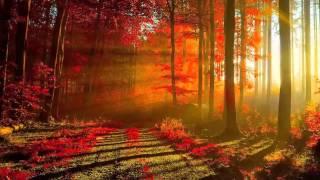 Музыка для души! Осень. Музыка для релаксации...