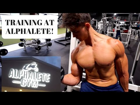 Training at ALPHALETE | 3D Energy Review | Filter Free Physique Update