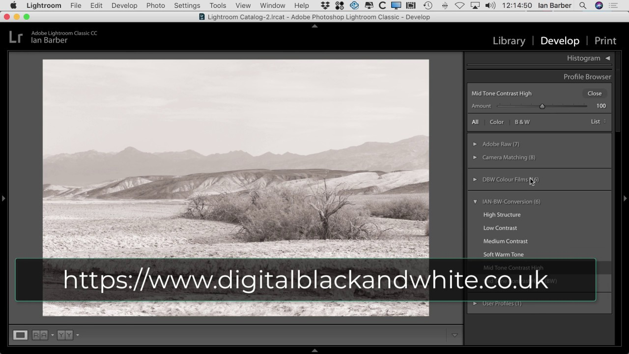 Lightroom CC And Camera Raw Profiles Filtering + FREE PROFILES