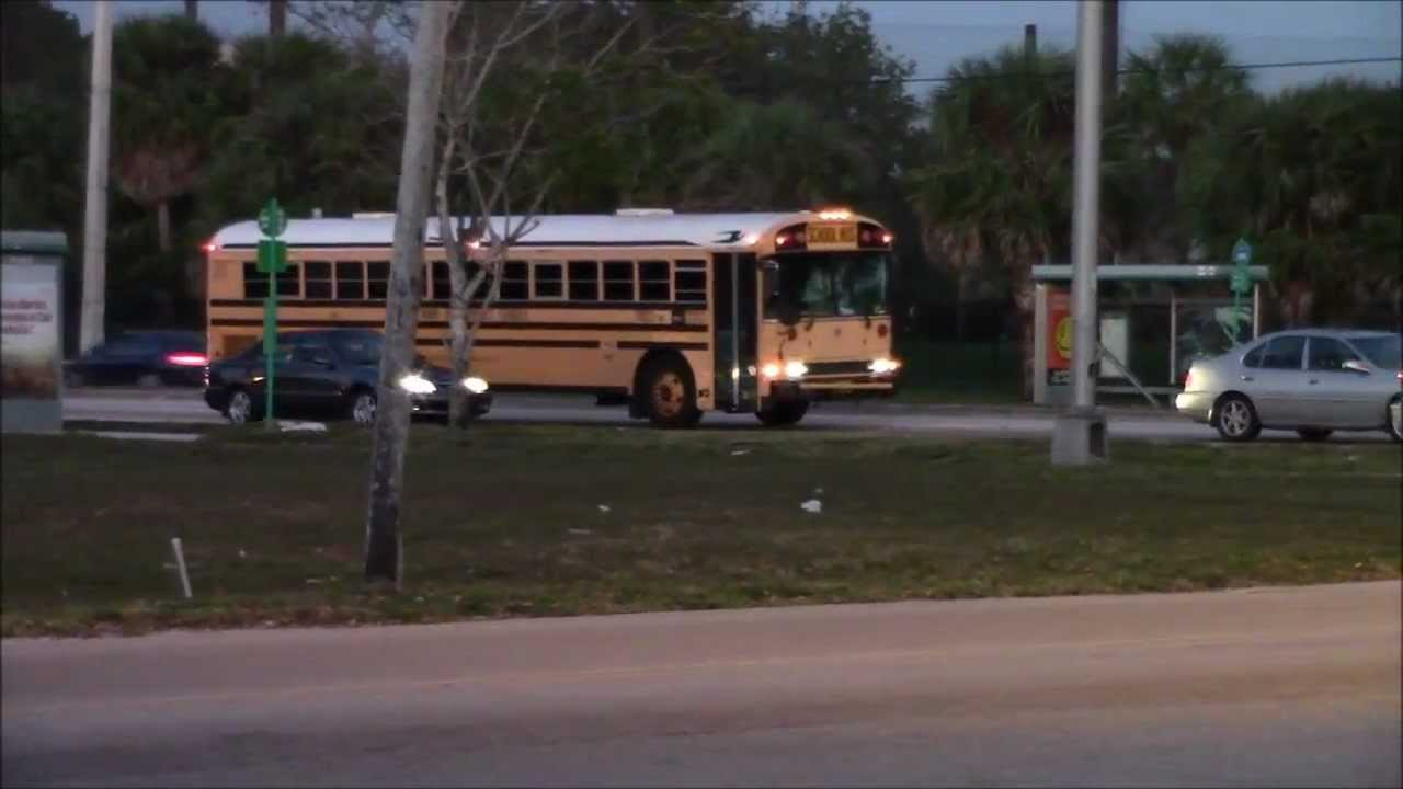 Blue Bird Bus >> EARLY MORNING BLUE BIRD SCHOOL BUSES IN MIAMI FL. - YouTube