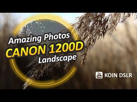 Membuat Foto Bokeh - Background Blur Maksimal.
