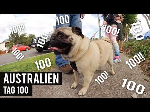 Ein WUNDER ist geschehen - Tag 100 - AUSTRALIEN - WORK & TRAVEL - BACKPACKING