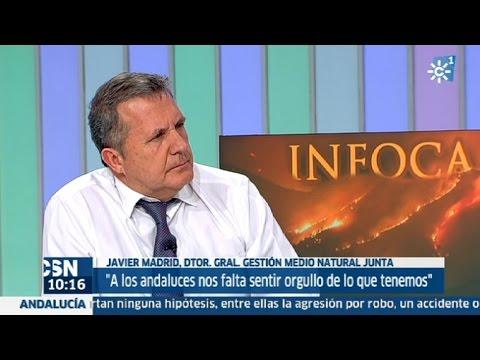 La entrevista | Javier Madrid, dtor. gral. Gestión Natural Junta
