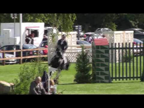 Ronnie Healy - Greenbank Harlequin