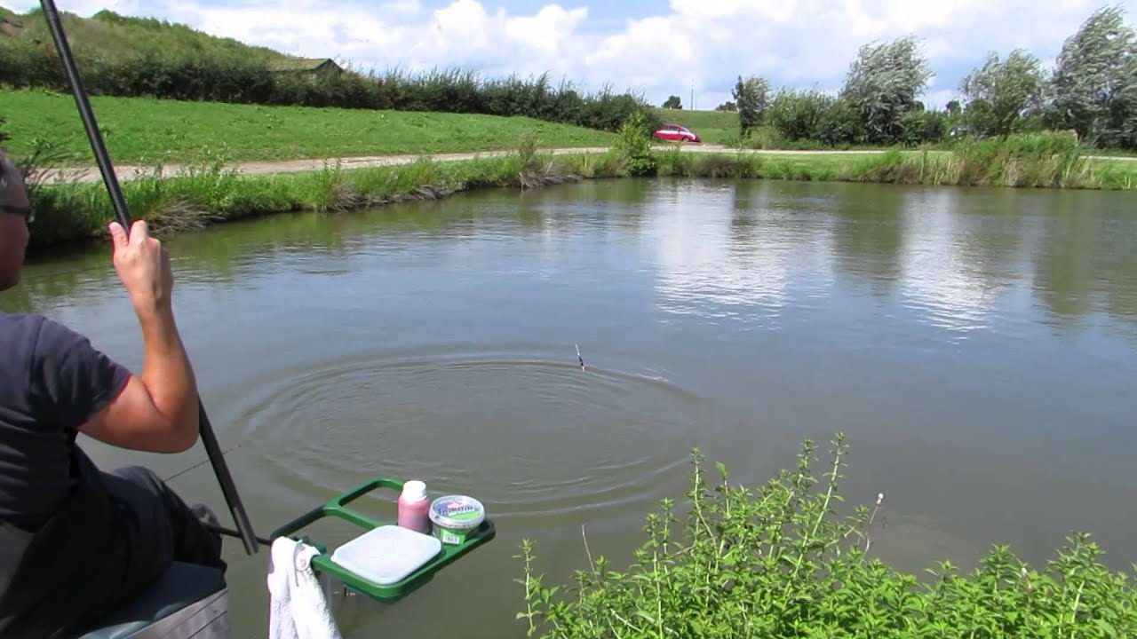 Karper vissen op de vijver in appeltern 2014 youtube for Vissen vijver