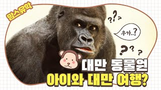 아이와 대만여행 타이페이동물원 Taipei Zoo