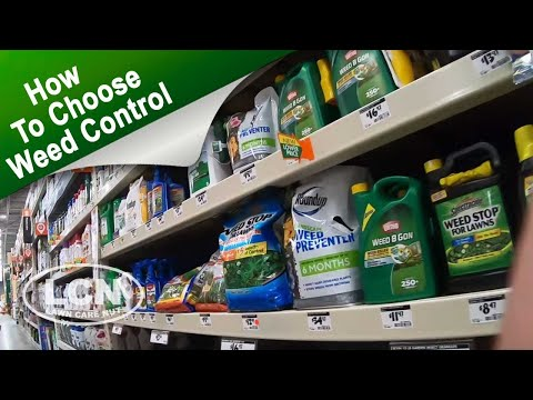 How To Choose The Right Weed Control For Your Lawn With Allyn Hane The Lawn Care Nut