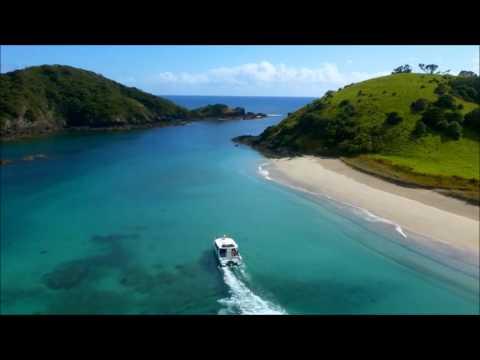 Dit is waarom je moet gaan werken en reizen in Nieuw-Zeeland!