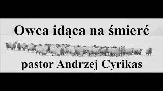 """Kazanie """"Owca idąca na śmierć"""" (21.08.19) – pastor Andrzej Cyrikas"""