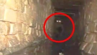 8 Criaturas Misteriosas CAPTADAS EN CAMARA