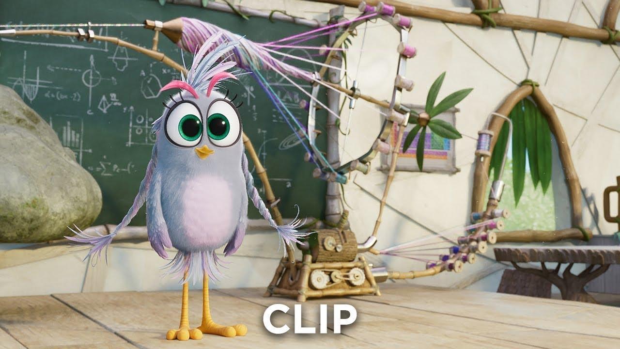 Angry Birds Im Kino