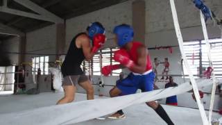 Cuba Boxing sparring training