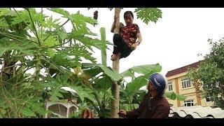 Cười vởi Lê Thị Dần-Bé Khánh Linh và Nguyễn Hội Thao trong MV ca nhạc hài Mẹ Yêu Ơi
