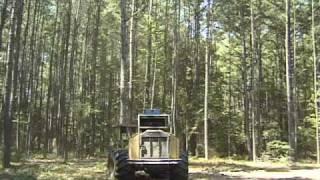 Timber Harvest: Feller Buncher 1