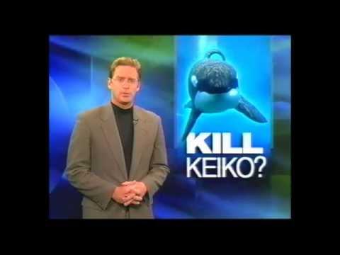 """KOMO 4 News (ABC Seattle): """"Kill Keiko the Orca?"""" (11pm)"""