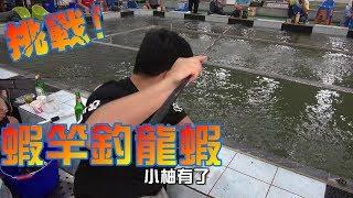 聽說用蝦竿釣龍蝦一定斷!我就來挑戰看看!台南新峰龍蝦池Shrimp fishing in Taiwan  台湾のエビ釣り