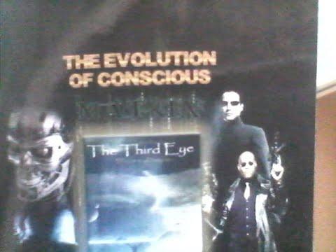 Just got the Matrix 4 book by Sophia Stewart