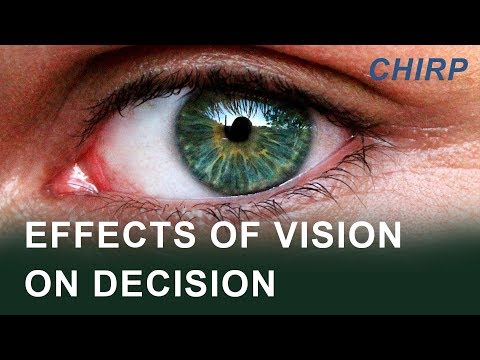CHIRP Maritime: Vision & Decision