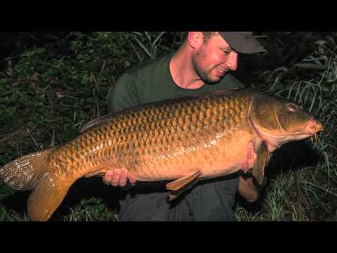 Home and Abroad with Kevin Diederen - Team Korda