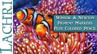 Winsor & Newton Pigment Marker Clownfish - Tips & Techniques w/ Lachri