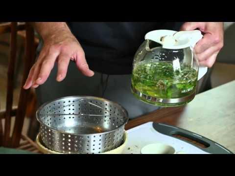 Herbal Medic Shares Powerful Immune Boosting Herbal Tea Recipe