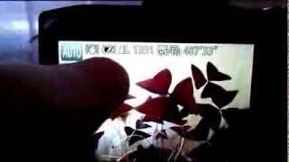 Проблема Canon Powershot SX280HS(Обнаружена проблема Canon Powershot SX280HS Работая в режиме видео SX280HS создает проблему, программный глюк, который..., 2013-12-05T09:30:02.000Z)