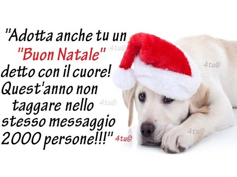 Auguri di buon natale 2018 e buon 2019 canzoni di natale for Immagini divertenti di buon sabato