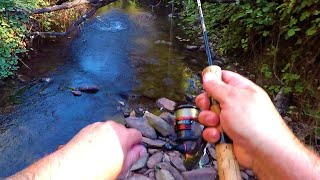 Exciting creek fishing at its best