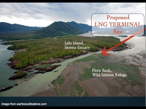 Should We Use LNG in Hawaii? (Barbara Treat and Richard Wallsgrove)