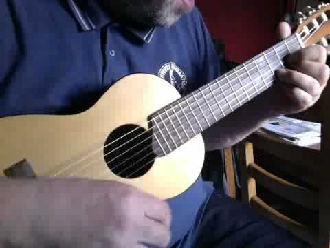 Umbrella Rihanna Ukulele Guitalele Cover Easy Chords Youtube