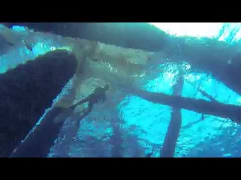 Hell Divers Rodeo 2014-Southern Stoners