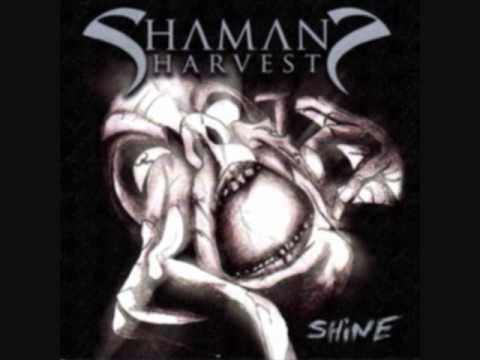 Shaman's Harvest - Dragonfly